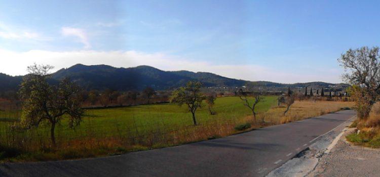 Pla d'Albarca